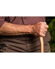Laska - najstarszy ortopedyczny przedmiot świata